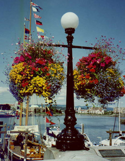 Beautiful Victoria lamp-posts